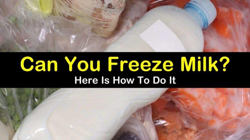 Can You Freeze Milk